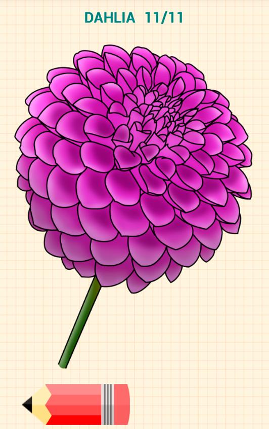 Drawn floral drow #11