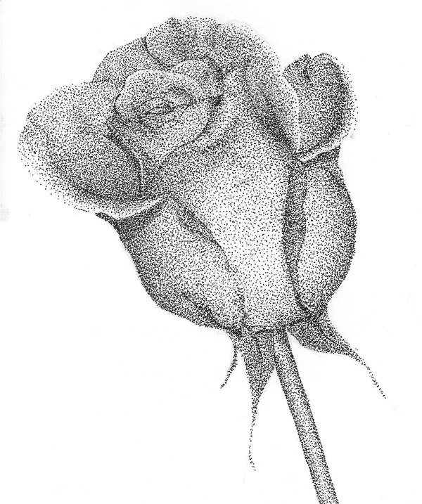 Drawn still life pointillism Com Art jowqi Rose Pinterest