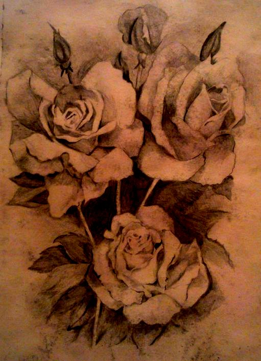Drawn rose bush detail drawing Sketch  drawing sketch drawing