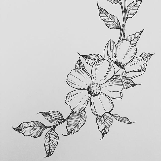 Drawn background flower designer Pinterest ideas Wednesdays drawing 25+