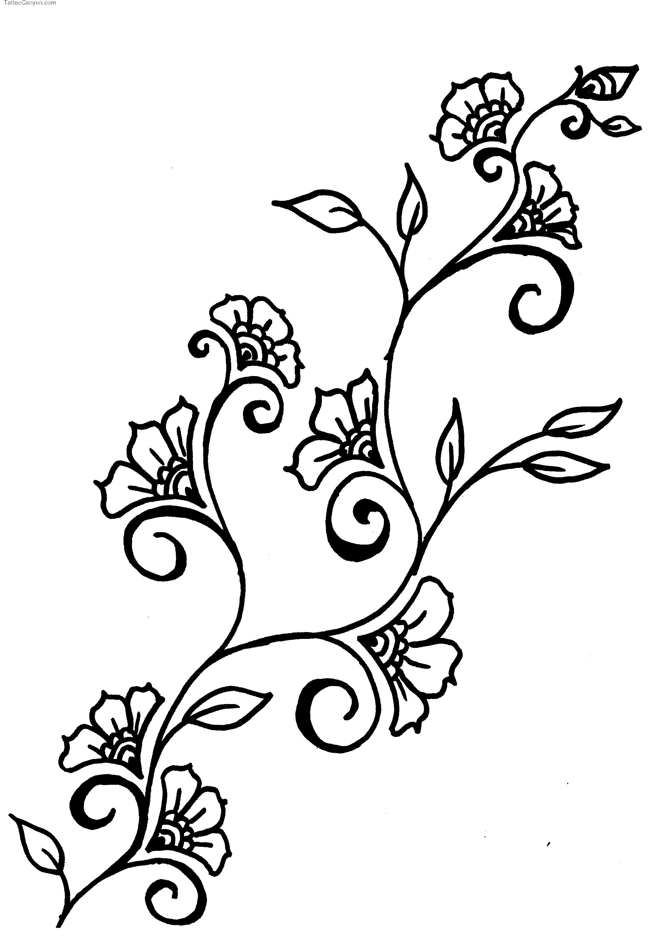 Drawn ivy branch Design Design Vines ClipArt Flowers