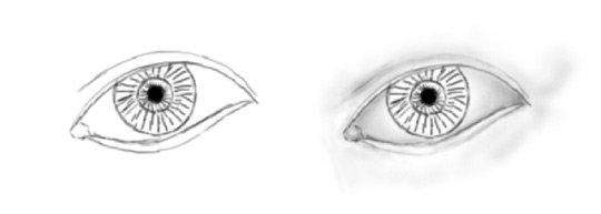 Drawn eyeball detail drawing Drawing How Step eyes Eyes