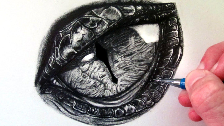 Drawn eyeball detail drawing  to Eye How Dragon