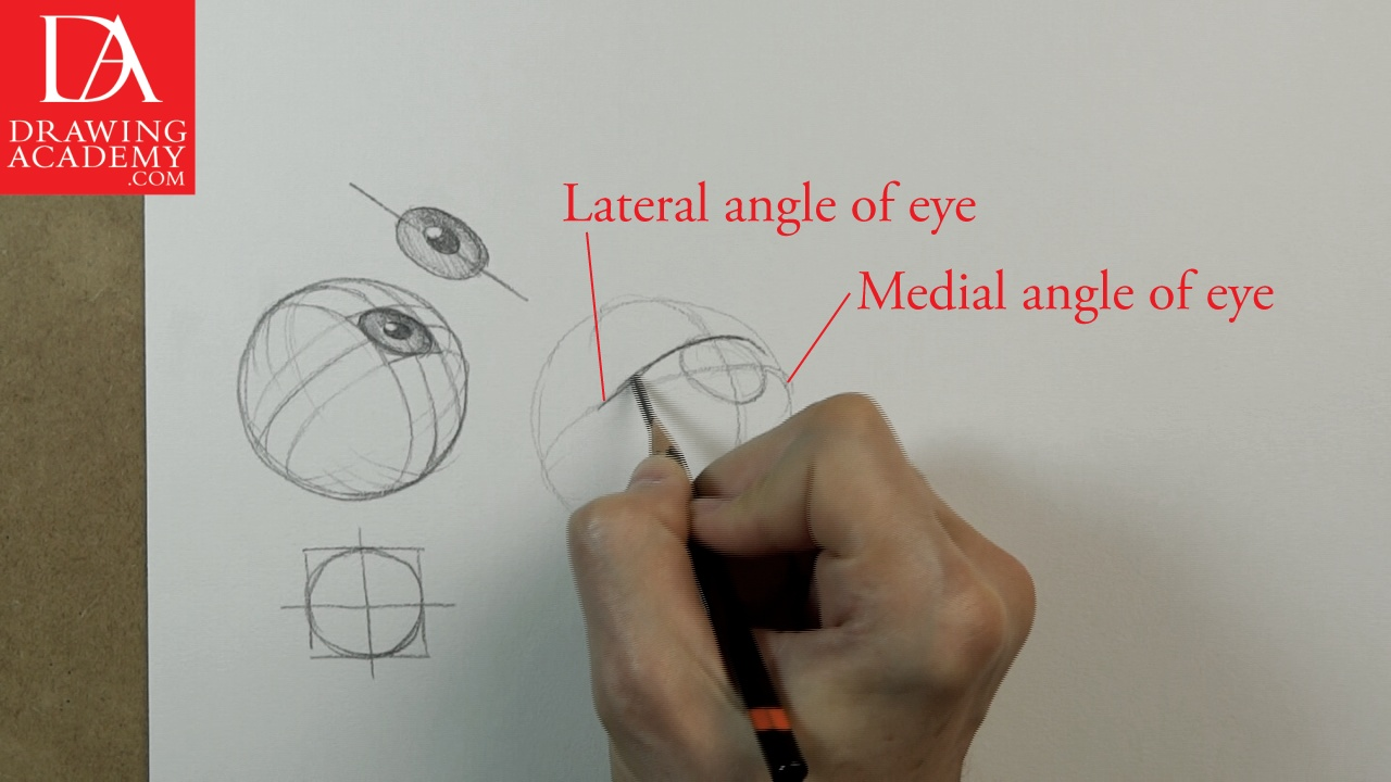 Drawn eyeball eyelid Lesson Discover Draw to this