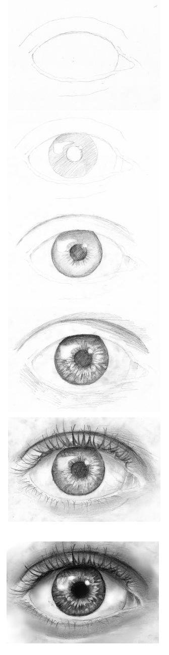 Drawn eyeball most realistic eye Realistic to Pinterest on eye