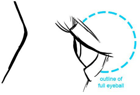 Drawn eyeball most realistic eye Have Eyes: It eye The