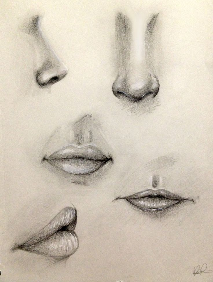 Drawn profile upturned nose Like drawing Lip 25+ ideas