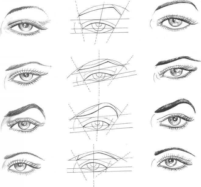Drawn eyeball structure Drawing Martel The Fashion Eyeball