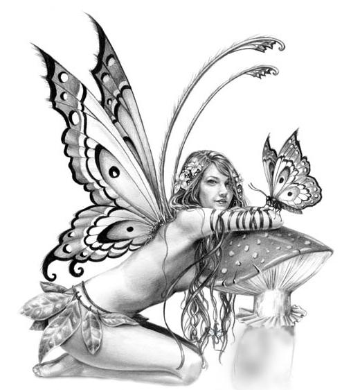Drawn fairy realistic  drawing Pencil Drawings Drawings