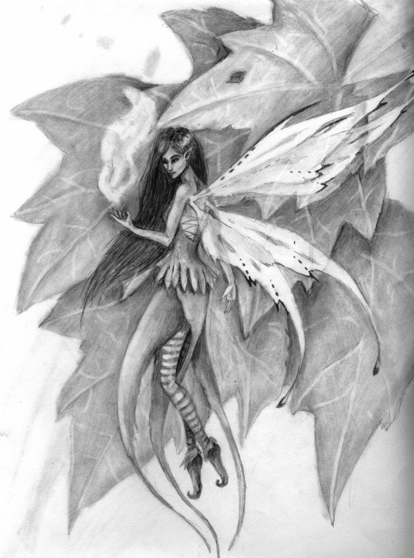 Drawn fairy realistic Images Drawings on Pencil Fairies