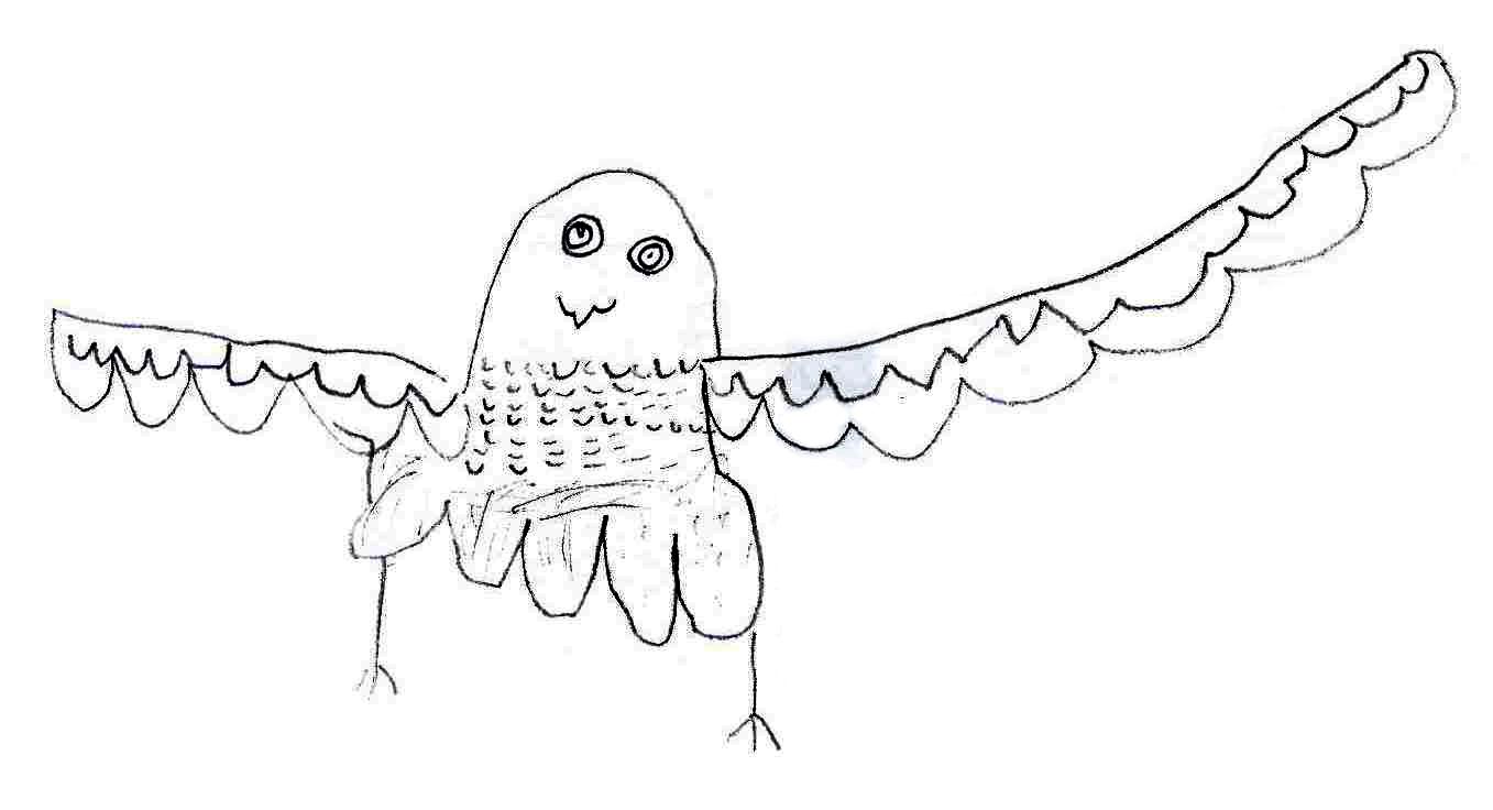 Drawn falcon falcon wing Pupils' of on a Falcon