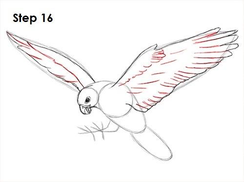 Drawn falcon falcon wing Wing photo#9 Falcon Drawing Wing