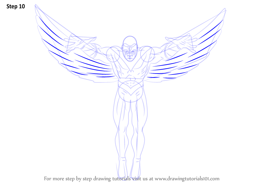 Drawn falcon falcon wing 11 How Step to