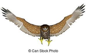 Peregrine Falcon clipart flight drawing Free Dark Royalty  falcon
