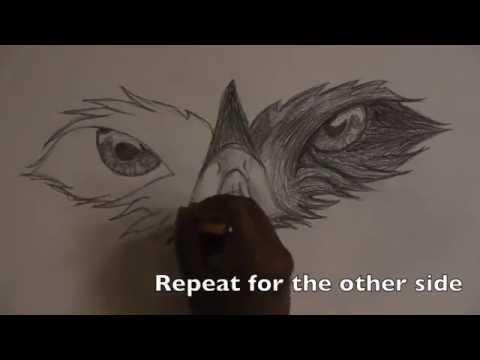 Drawn hawk hawk eye How Draw YouTube How Draw