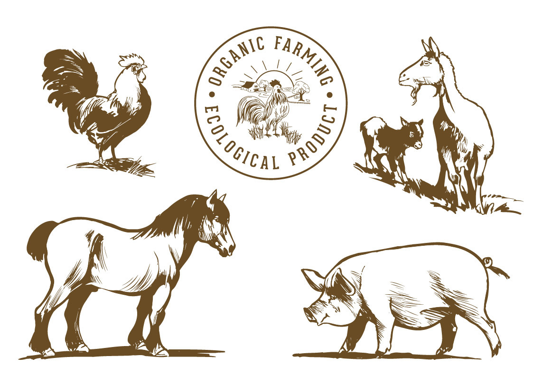 Drawn farm animals Drawn Vector Download download Animals