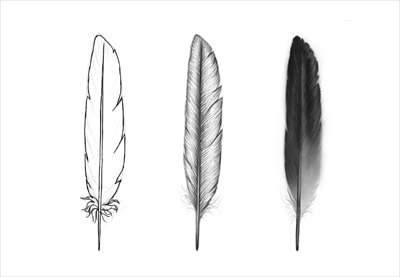 Drawn feather #9