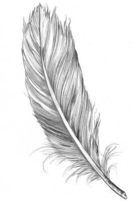 Drawn feather #8
