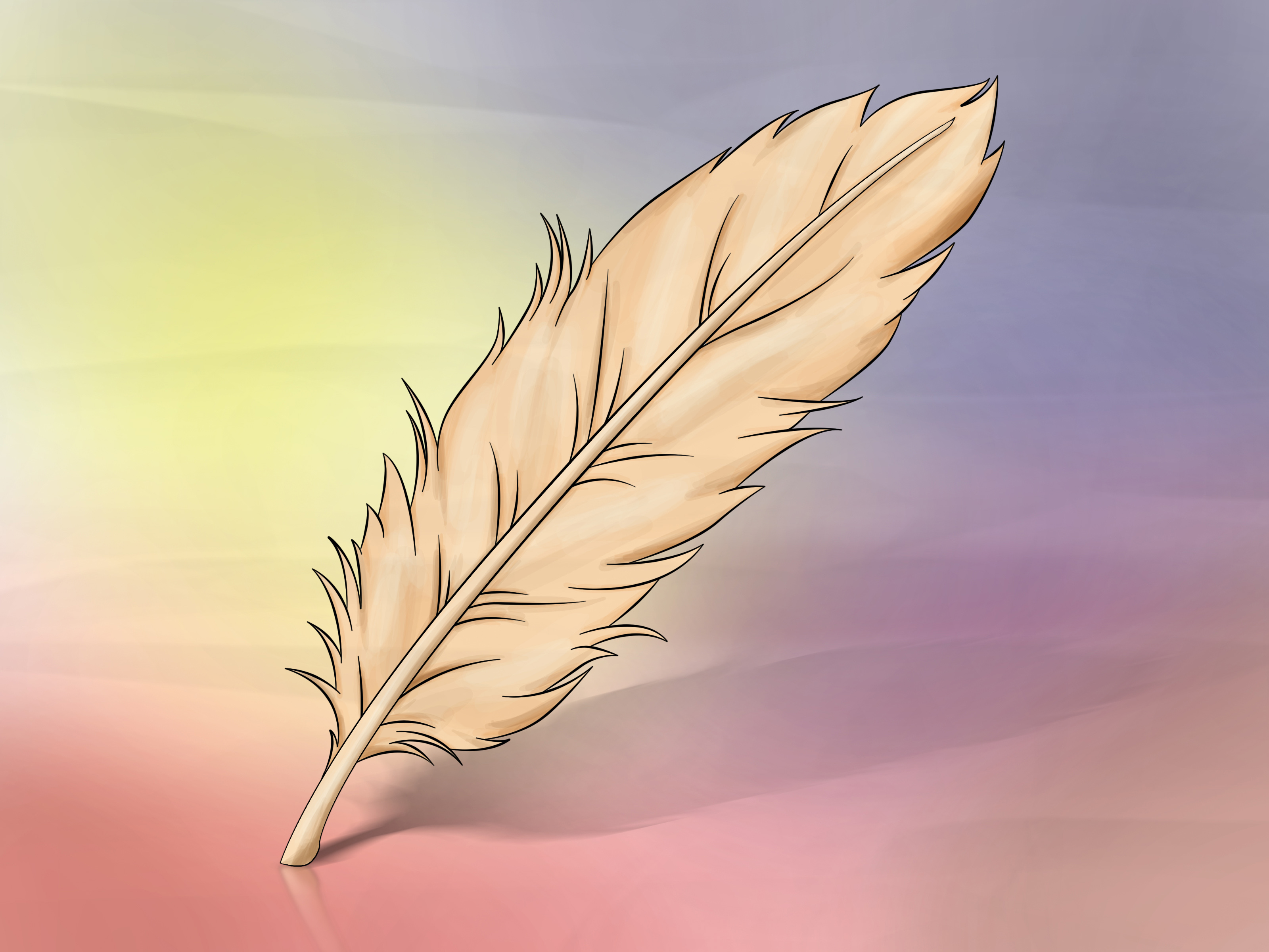 Drawn feather  Steps a Pictures) (with