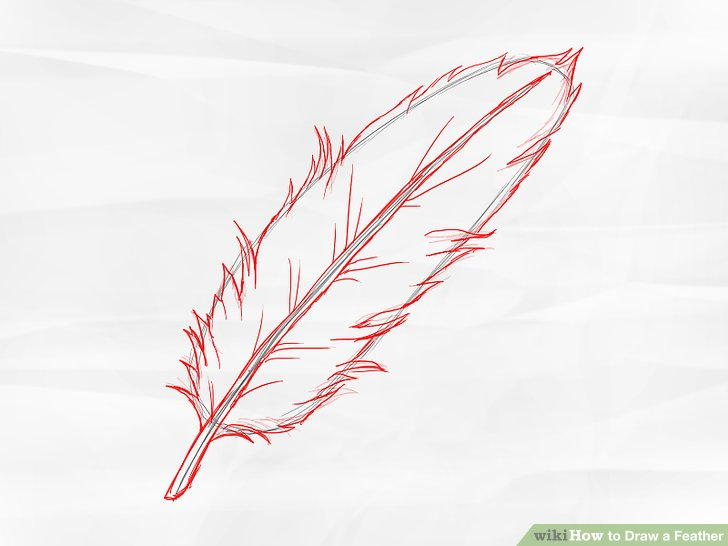 Drawn feather #1