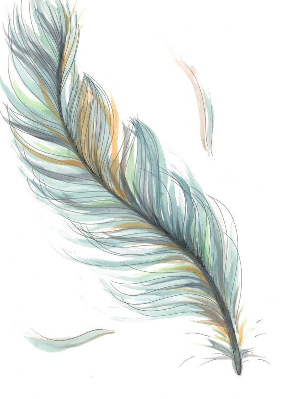 Drawn feather Original drawing Best on ideas