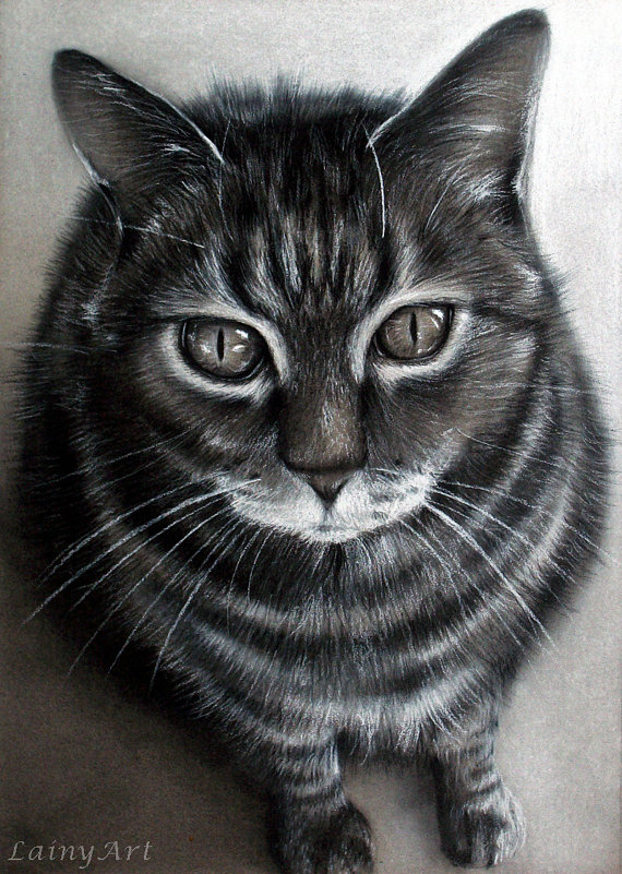 Drawn photos realistic From portrait Charcoal kitten Feline
