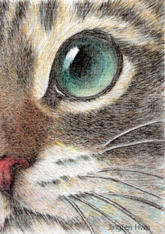 Drawn painting cat #2