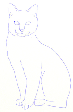 Drawn cat step by step #5