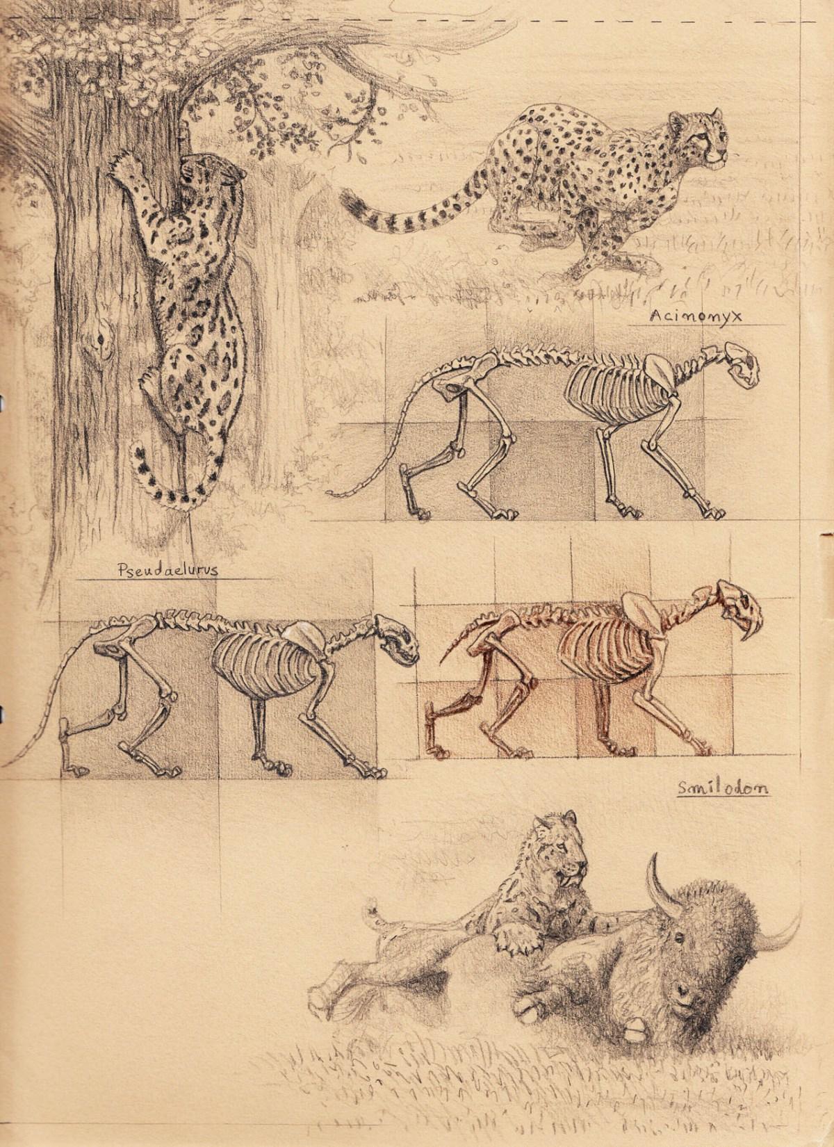 Drawn hunting cheetah Diaries Artist old Sabertooth 1: