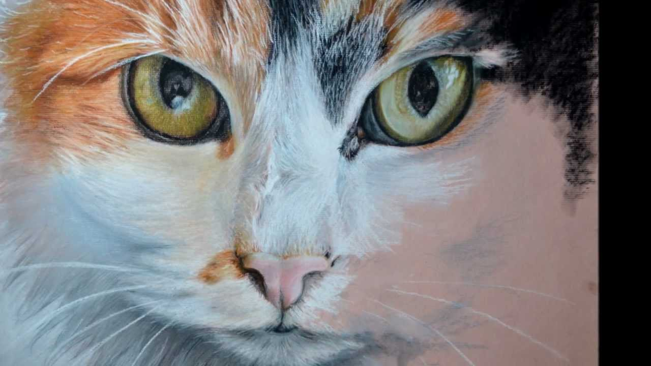 Drawn painting cat #3