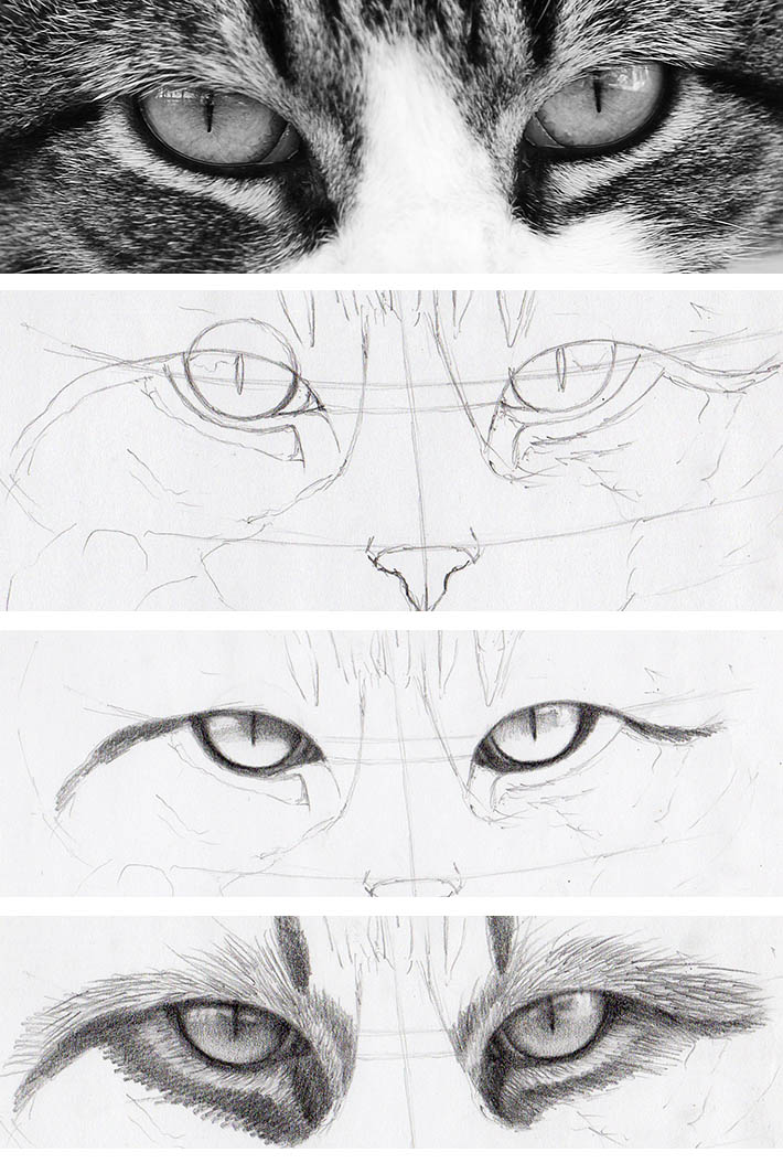 Drawn stare shaded Look Eyes to drawing Human