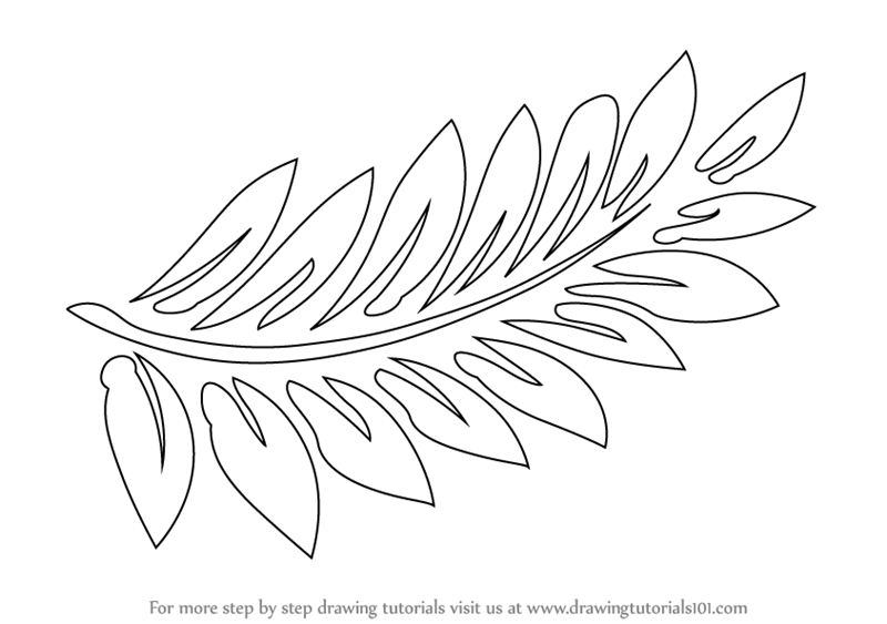 Drawn fern #10