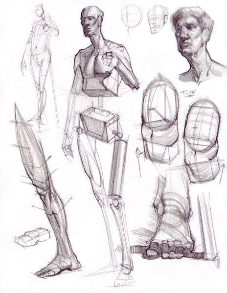 Drawn figurine composition Body body How human (Anatomy