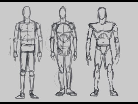 Drawn figurine human body structure The (Figure the Structure of