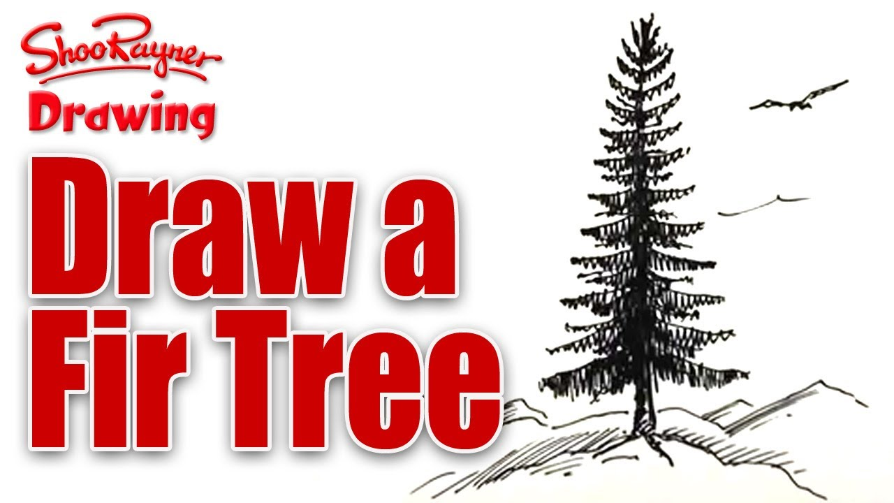 Drawn fir tree A a Learn tutorial to