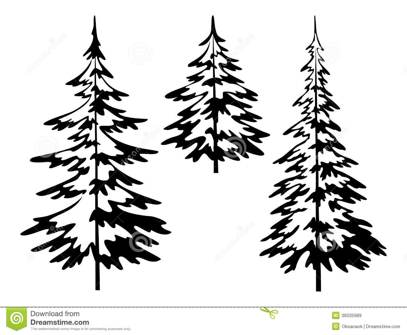 Drawn fir tree Trees Search illustrations  of