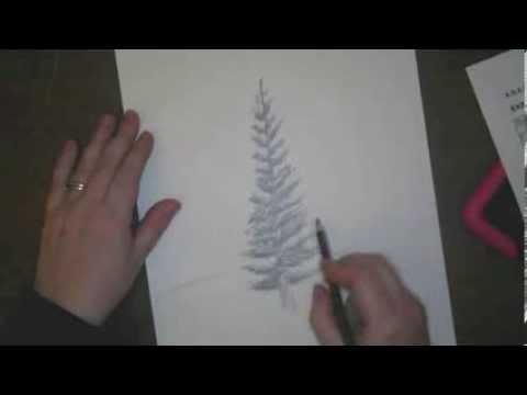 Drawn pine tree huge YouTube Draw Trees to How