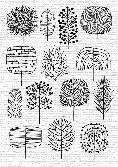 Drawn fir tree line drawing A drawing R / U