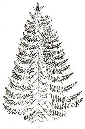 Drawn fir tree line drawing For  Coloring Christmas and