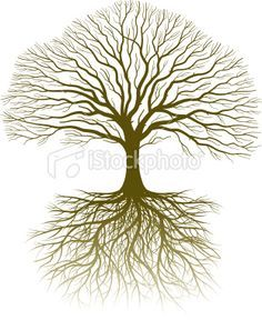 Drawn roots Search and with roots tree