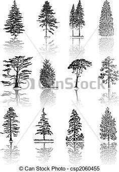 Drawn fir tree realistic Braking #climbing how belay Search