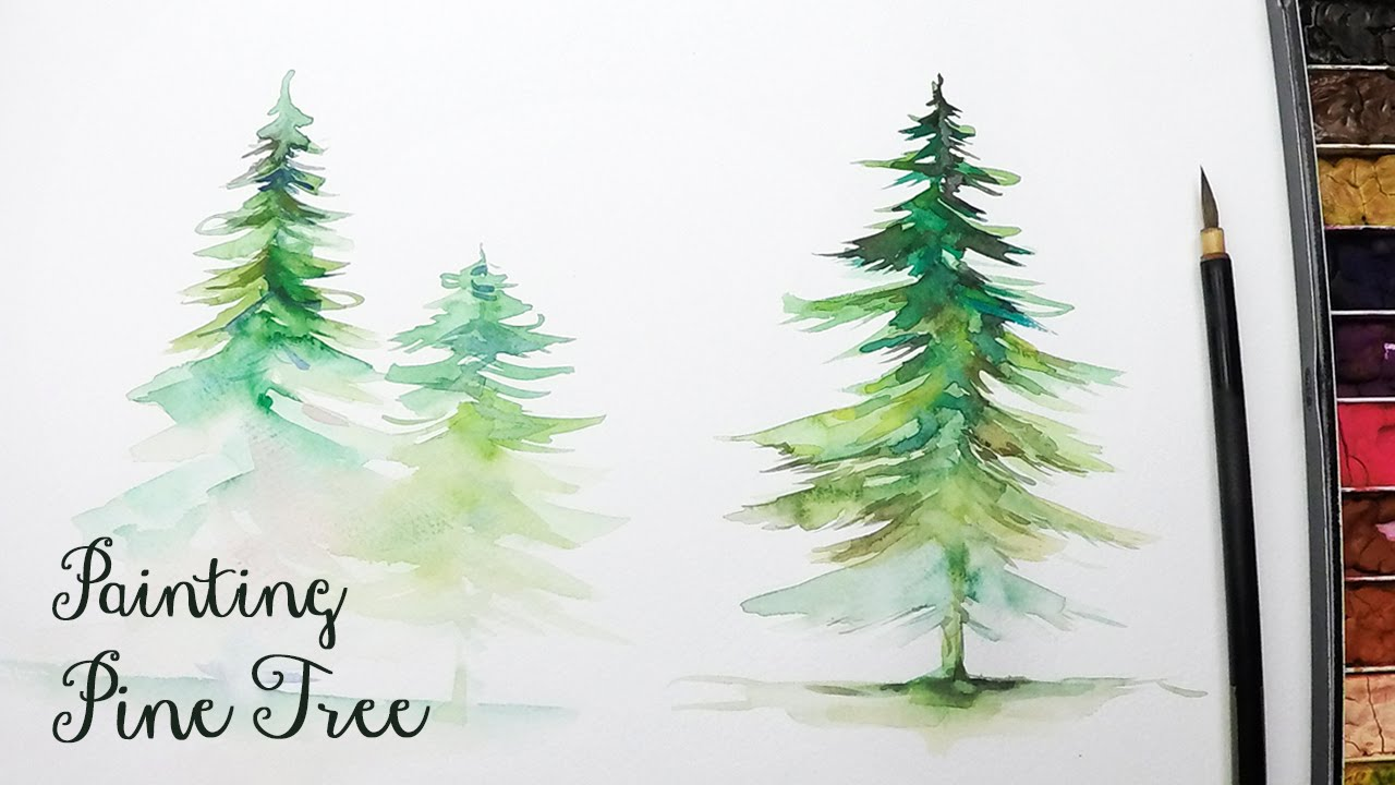Drawn pine tree watercolor [LVL3] Watercolor Paint to in