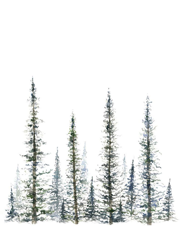 Drawn pine tree watercolor Pine christmas tree Print fir