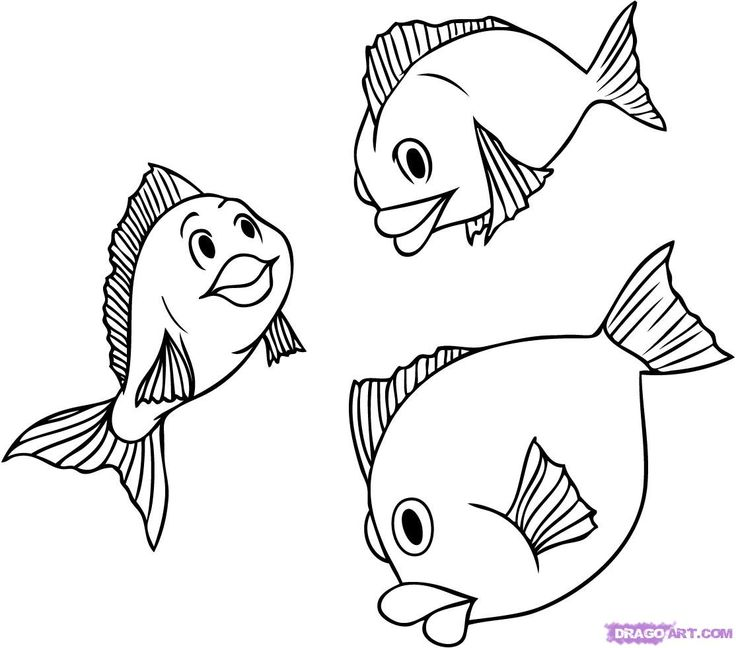 Drawn fish Pinterest fish on 25+ draw