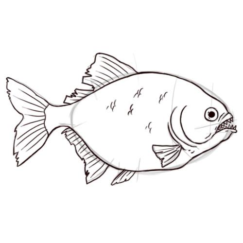 Drawn shrimp A Piranha: 29 5 Pictures)
