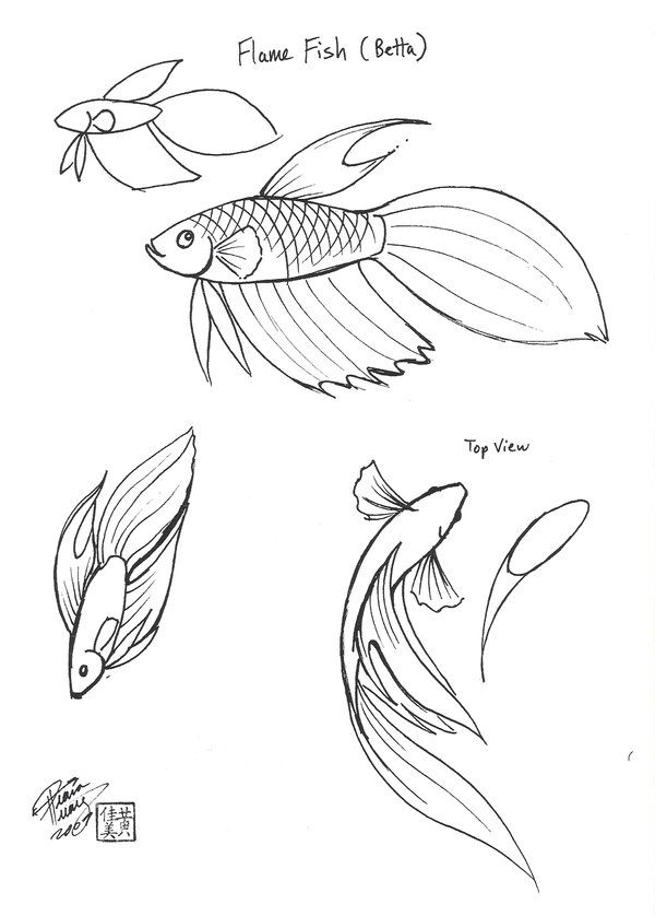 Drawn goldfish small fish DeviantART top Pinterest on The