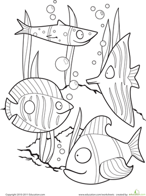 Drawn fishing school Fish Color Color Worksheets the