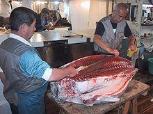 Drawn fishing market Processing Wikipedia Overview[edit] Fish