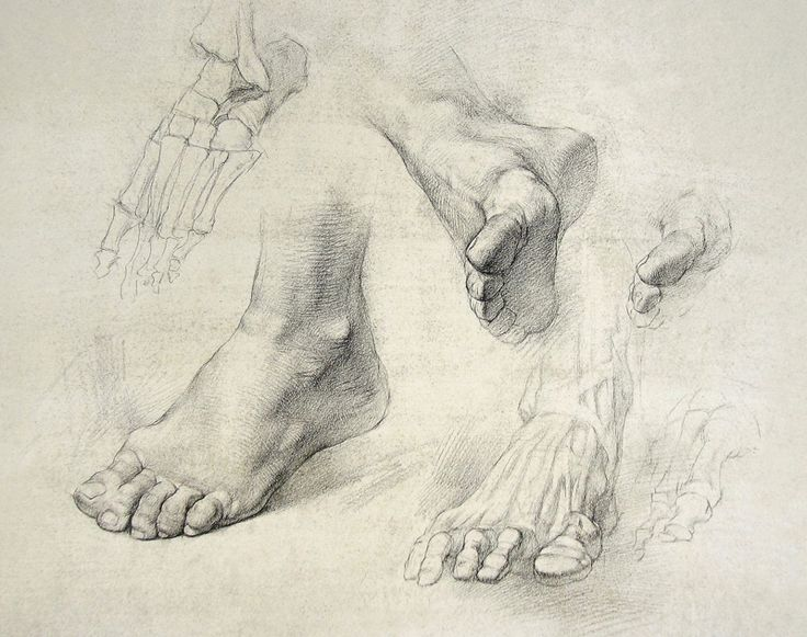 Drawn fist hand and foot Feet 155 images and drawing