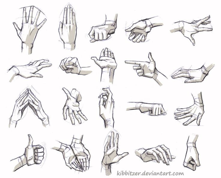 Drawn fist hand and foot Feet 95 images and Reference